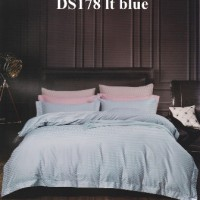 DS178 lt blue rz